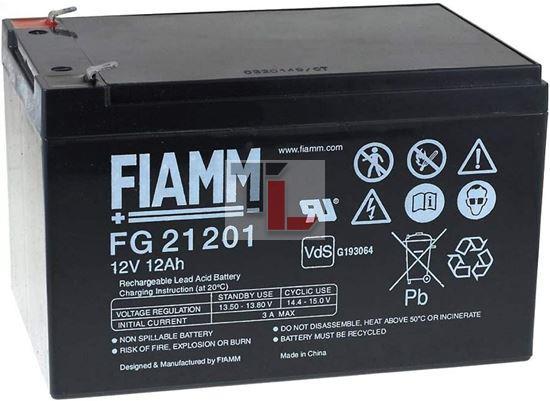 BATTERIA FIAMM FG21202