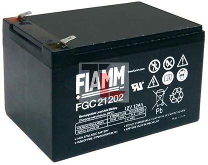 BATTERIA FIAMM FGC21202