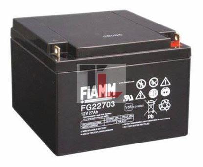 BATTERIA FIAMM FG22703